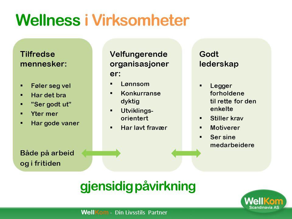  Personlig profil Den Personlige Wellness Profilen (PWP) danner grunnlaget for teamets og virksomhetens helhetlige Wellness-profil.  Faktorer Wellne