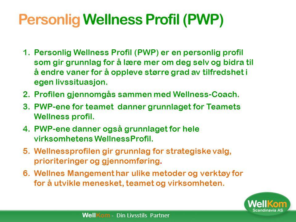 """Wellness i Virksomheter Tilfredse mennesker:  Føler seg vel  Har det bra  """"Ser godt ut""""  Yter mer  Har gode vaner Både på arbeid og i fritiden Go"""