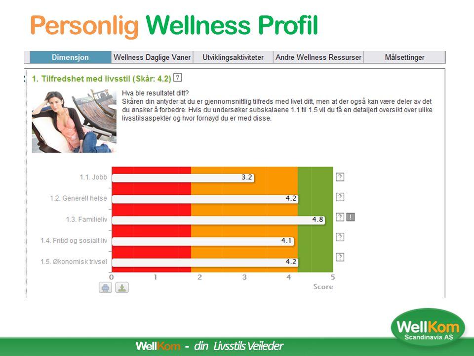 Wellness Team Rapport WellKom - Din Livsstils Partner