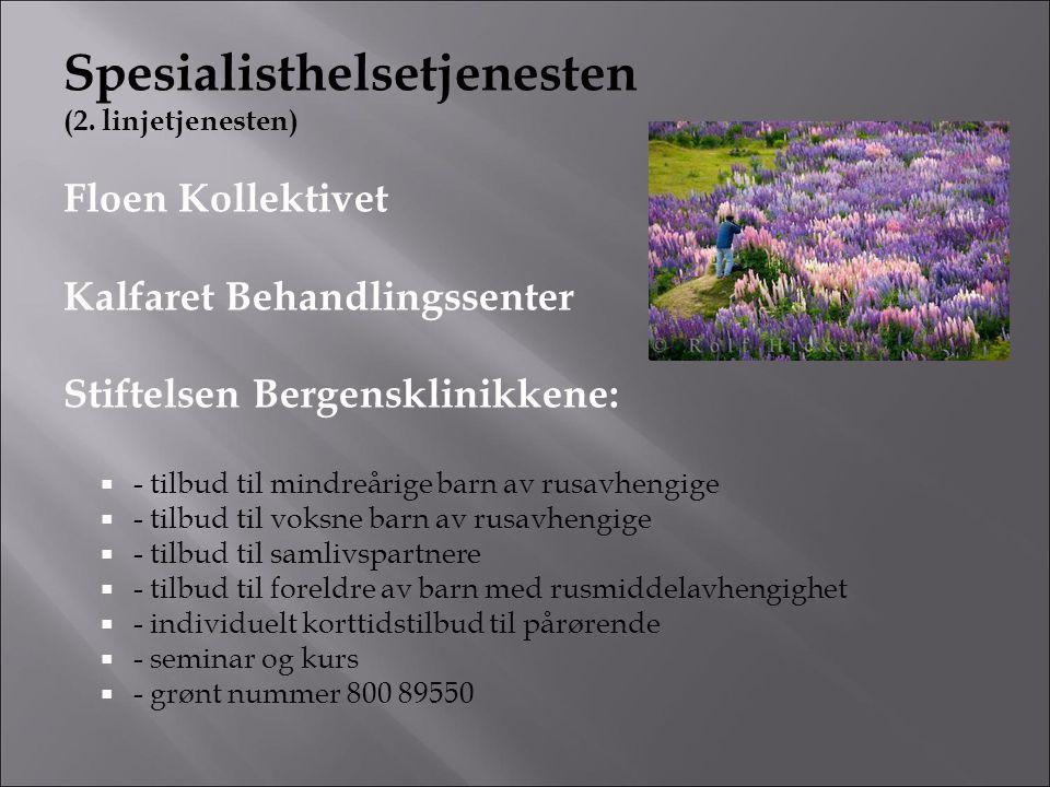 Spesialisthelsetjenesten (2. linjetjenesten) Floen Kollektivet Kalfaret Behandlingssenter Stiftelsen Bergensklinikkene:  - tilbud til mindreårige bar