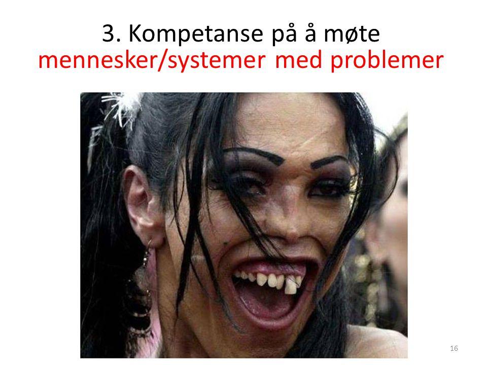 3. Kompetanse på å møte mennesker/systemer med problemer 16