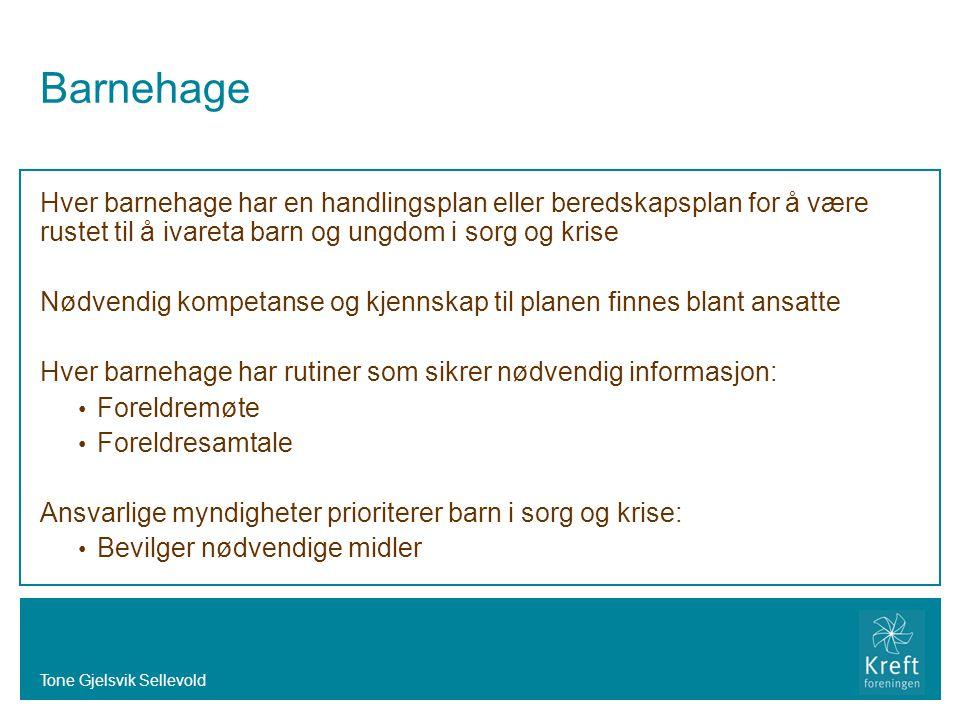 Tone Gjelsvik Sellevold Barnehage Hver barnehage har en handlingsplan eller beredskapsplan for å være rustet til å ivareta barn og ungdom i sorg og kr