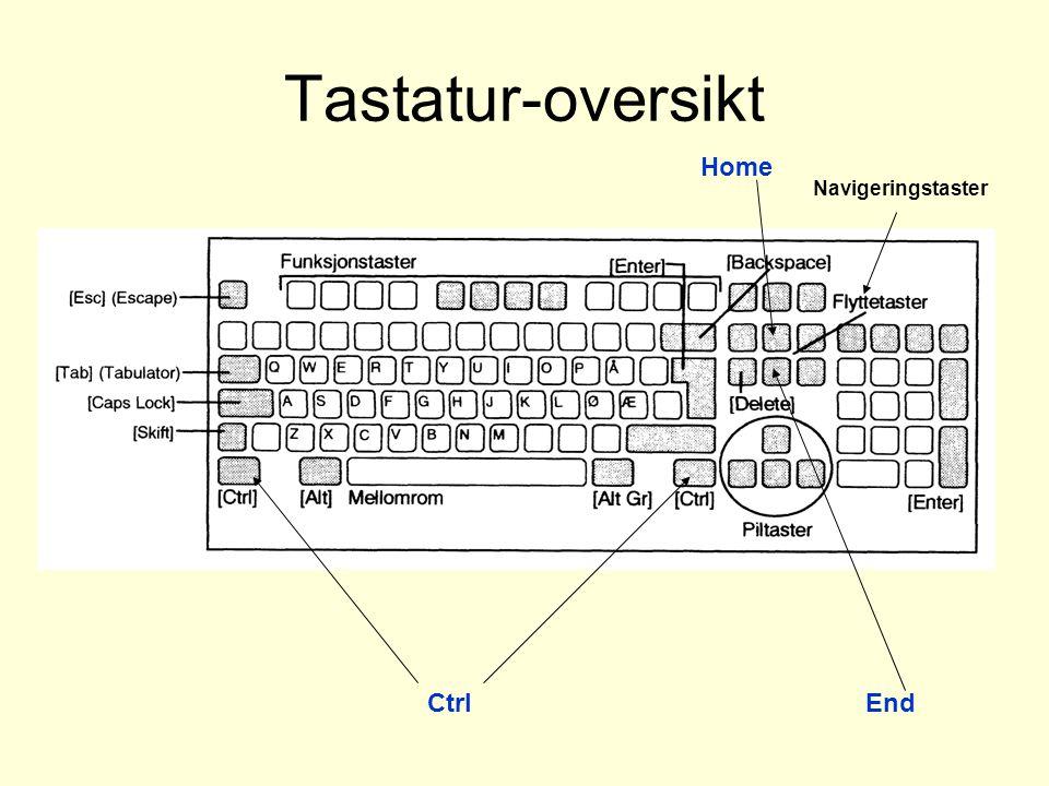 Tastatur-oversikt Navigeringstaster Home CtrlEnd