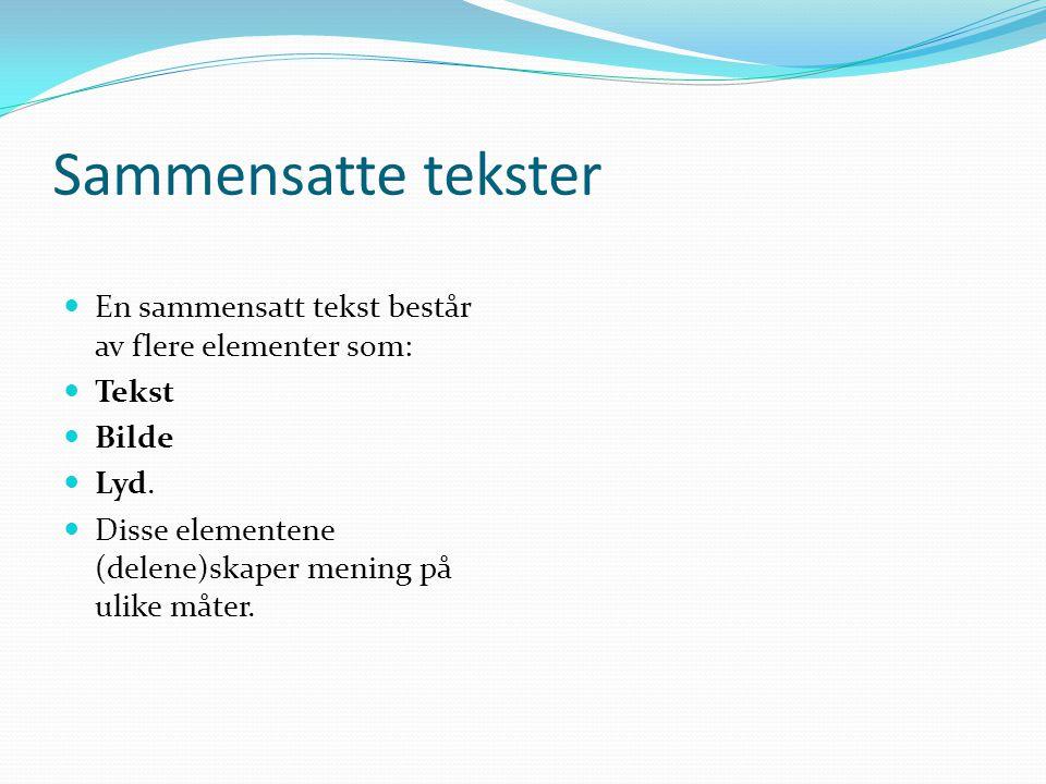 Vi har to typer tekster i fagplanen i norsk. 1: Saktekster (Eksempler: Artikkel, foredrag, intervju, brev, søknad, referat, rapport, kåseri.) 2: Skjøn