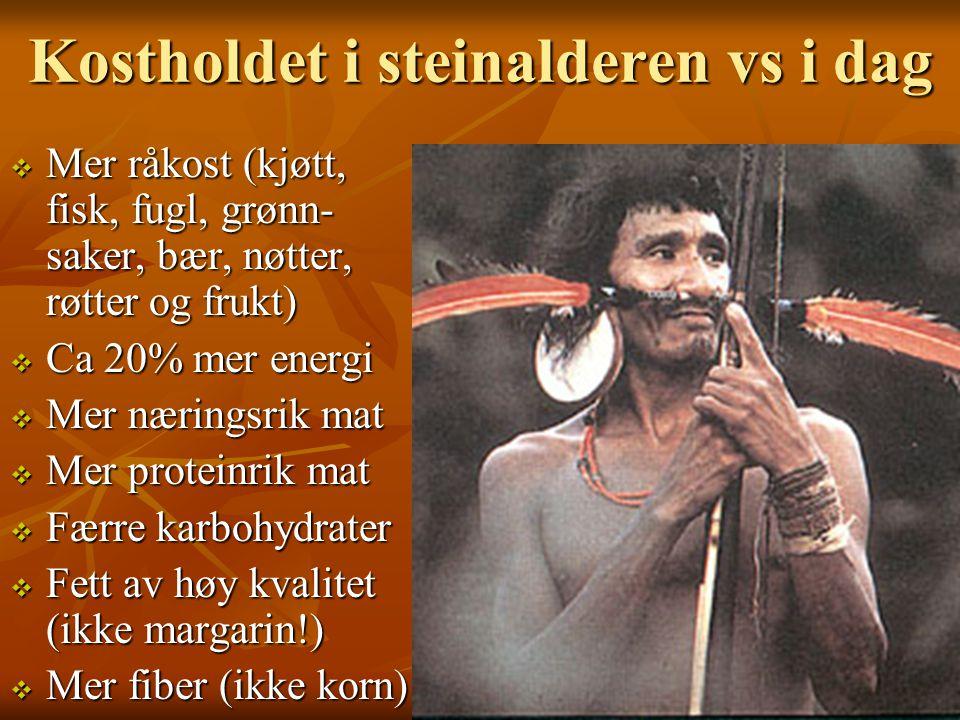 Kostholdet i steinalderen vs i dag  Mer råkost (kjøtt, fisk, fugl, grønn- saker, bær, nøtter, røtter og frukt)  Ca 20% mer energi  Mer næringsrik m