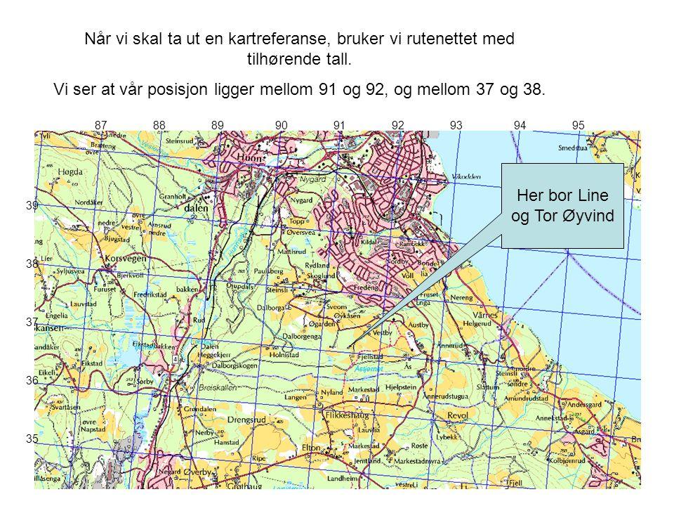 8788899091929394 39 36 37 38 35 Her bor Line og Tor Øyvind 95 Når vi skal ta ut en kartreferanse, bruker vi rutenettet med tilhørende tall. Vi ser at