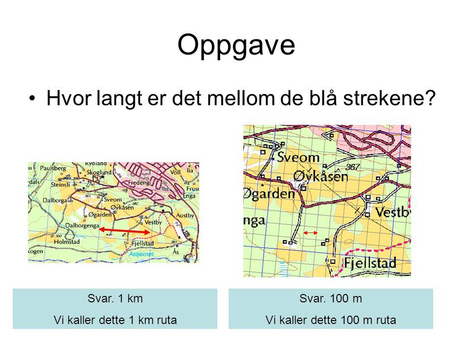 Oppgave •Hvor langt er det mellom de blå strekene? Svar. 1 km Vi kaller dette 1 km ruta Svar. 100 m Vi kaller dette 100 m ruta