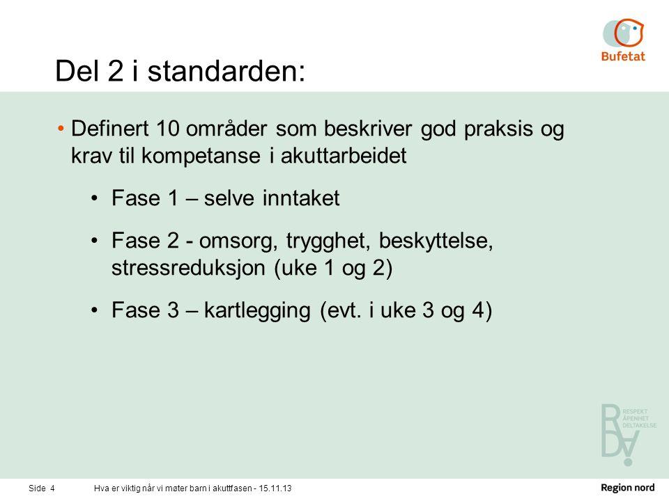 Del 2 i standarden: •Definert 10 områder som beskriver god praksis og krav til kompetanse i akuttarbeidet •Fase 1 – selve inntaket •Fase 2 - omsorg, t