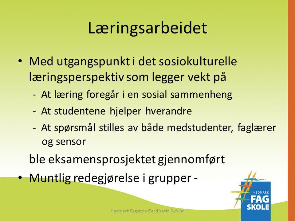 Læringsarbeidet • Med utgangspunkt i det sosiokulturelle læringsperspektiv som legger vekt på - At læring foregår i en sosial sammenheng - At studente