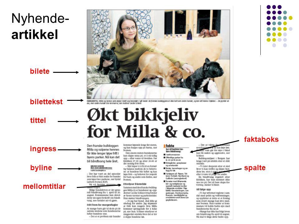 bilete bilettekst tittel ingress byline mellomtitlar faktaboks spalte Nyhende- artikkel