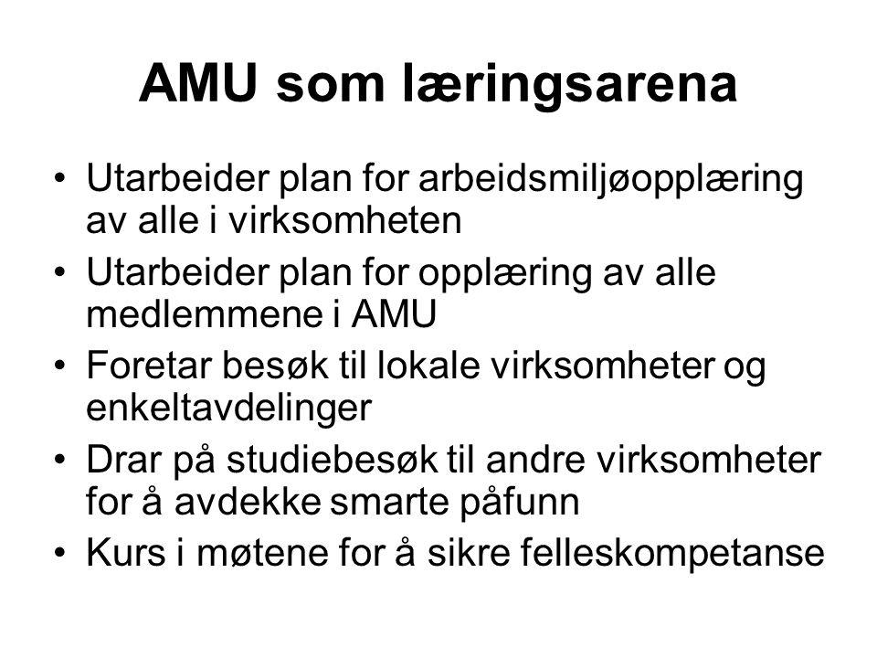 AMU som læringsarena •Utarbeider plan for arbeidsmiljøopplæring av alle i virksomheten •Utarbeider plan for opplæring av alle medlemmene i AMU •Foreta