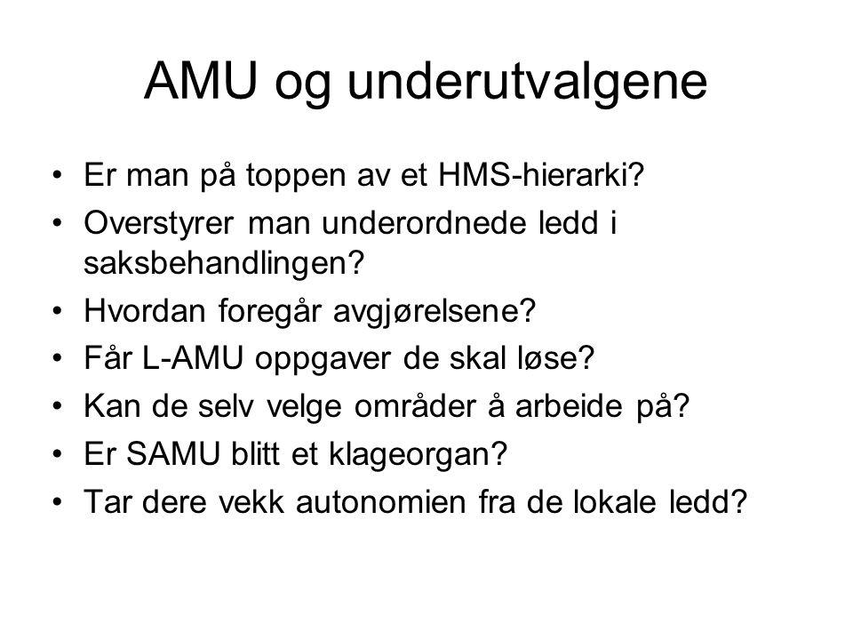 AMU og underutvalgene •Er man på toppen av et HMS-hierarki? •Overstyrer man underordnede ledd i saksbehandlingen? •Hvordan foregår avgjørelsene? •Får