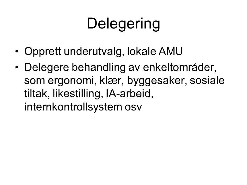 Delegering •Opprett underutvalg, lokale AMU •Delegere behandling av enkeltområder, som ergonomi, klær, byggesaker, sosiale tiltak, likestilling, IA-ar