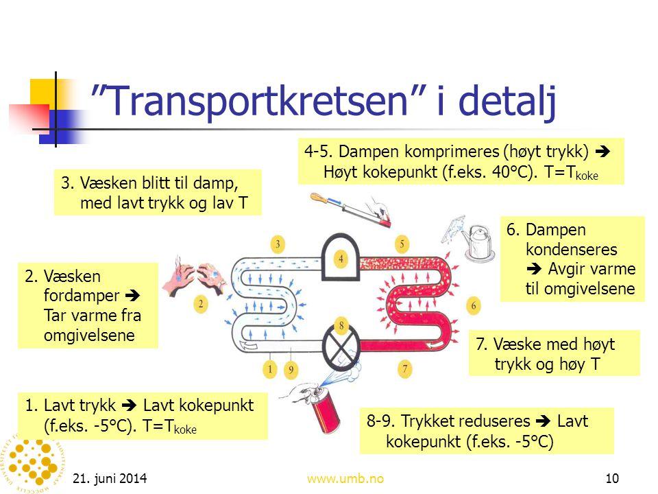 """21. juni 2014www.umb.no10 """"Transportkretsen"""" i detalj 1. Lavt trykk  Lavt kokepunkt (f.eks. -5°C). T=T koke 2. Væsken fordamper  Tar varme fra omgiv"""