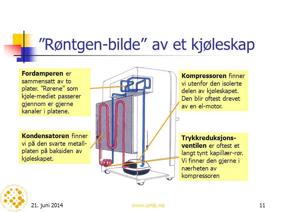 """21. juni 2014www.umb.no11 """"Røntgen-bilde"""" av et kjøleskap Fordamperen er sammensatt av to plater. """"Rørene"""" som kjøle-mediet passerer gjennom er gjerne"""