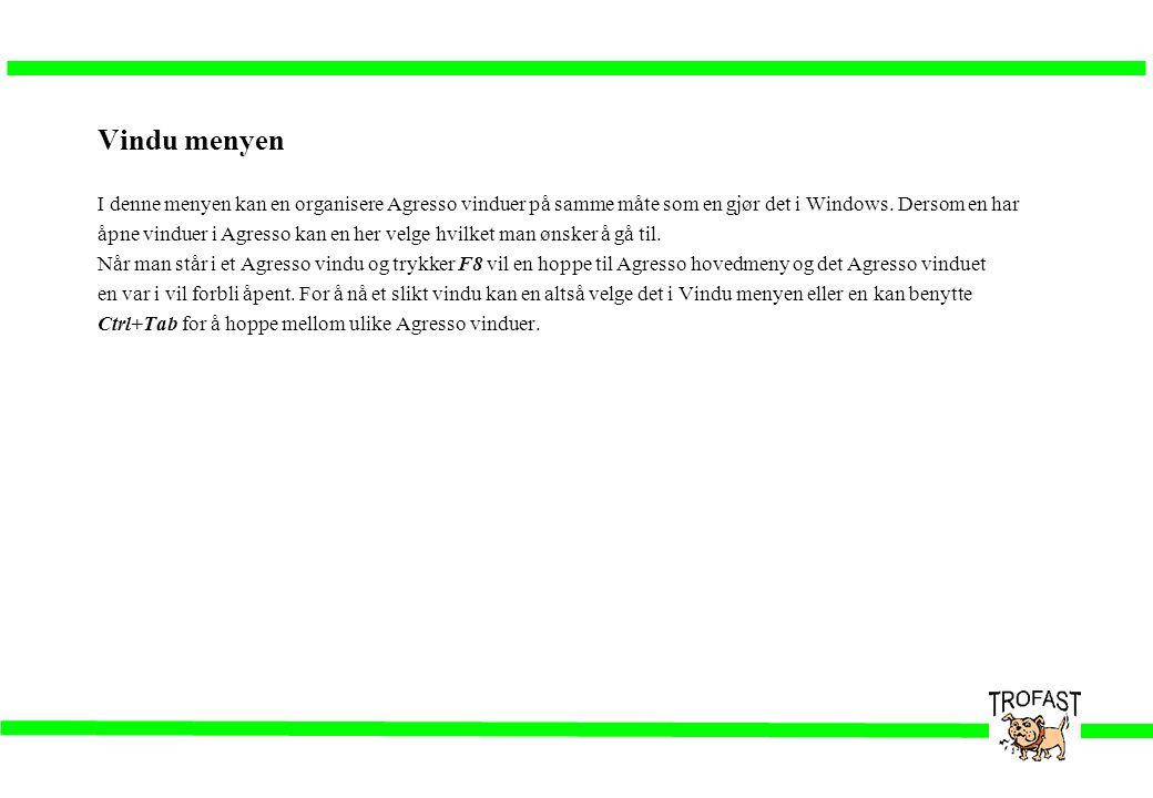 Vindu menyen I denne menyen kan en organisere Agresso vinduer på samme måte som en gjør det i Windows. Dersom en har åpne vinduer i Agresso kan en her