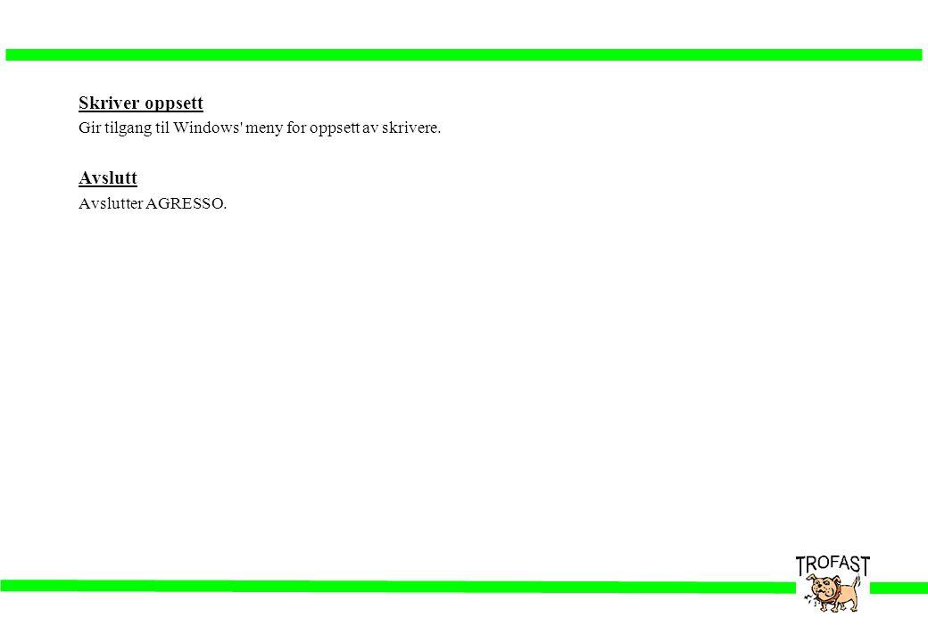 Skriver oppsett Gir tilgang til Windows' meny for oppsett av skrivere. Avslutt Avslutter AGRESSO.