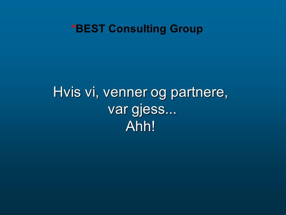 Hvis vi, venner og partnere, var gjess... Ahh! *BEST Consulting Group