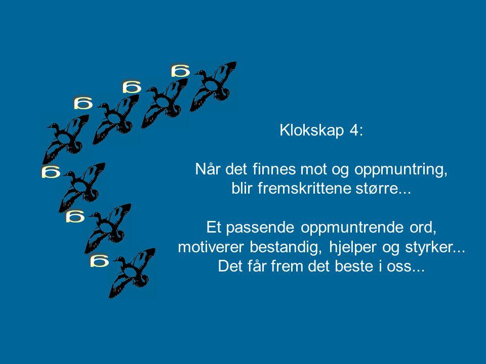 """Gjessene som flyr i """"V"""" formasjon, """"gakker"""" til de foran for å oppmuntre og støtte de som flyr i front.. På den måten holder de samme hastighet."""