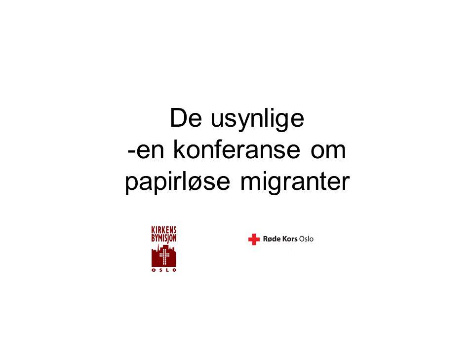 De usynlige -en konferanse om papirløse migranter