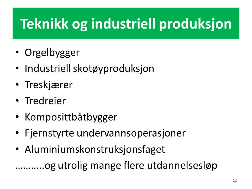 Teknikk og industriell produksjon • Orgelbygger • Industriell skotøyproduksjon • Treskjærer • Tredreier • Komposittbåtbygger • Fjernstyrte undervannso