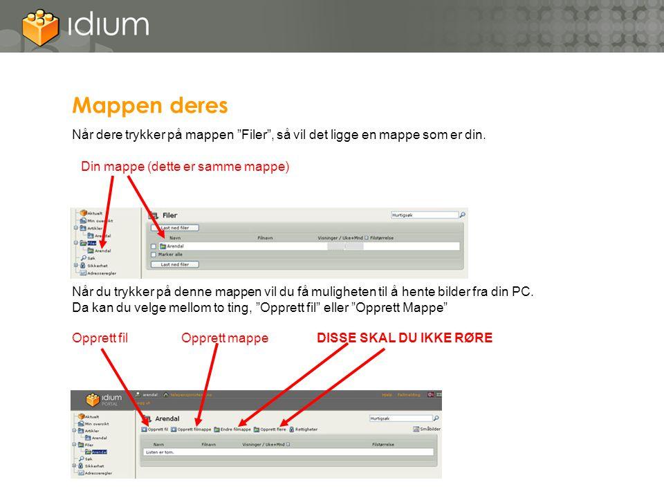 """Mappen deres Når dere trykker på mappen """"Filer"""", så vil det ligge en mappe som er din. Når du trykker på denne mappen vil du få muligheten til å hente"""
