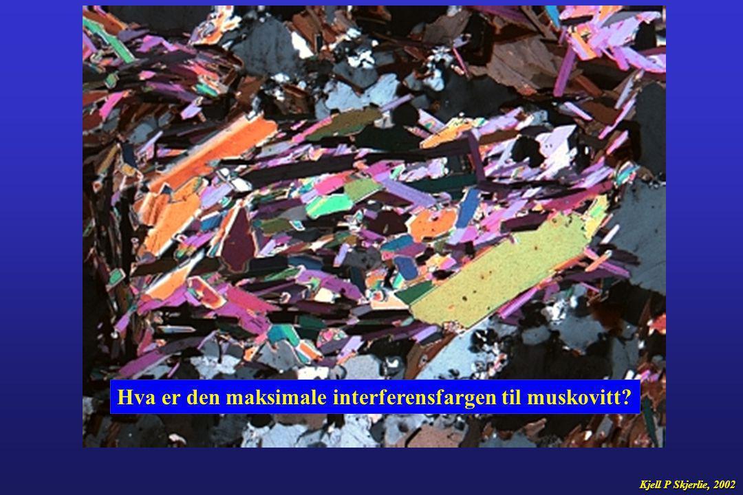 Hva er den maksimale interferensfargen til muskovitt? Kjell P Skjerlie, 2002