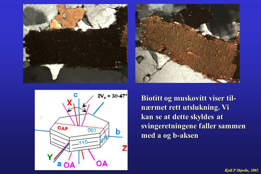 Biotitt og muskovitt viser til- nærmet rett utslukning. Vi kan se at dette skyldes at svingeretningene faller sammen med a og b-aksen Kjell P Skjerlie