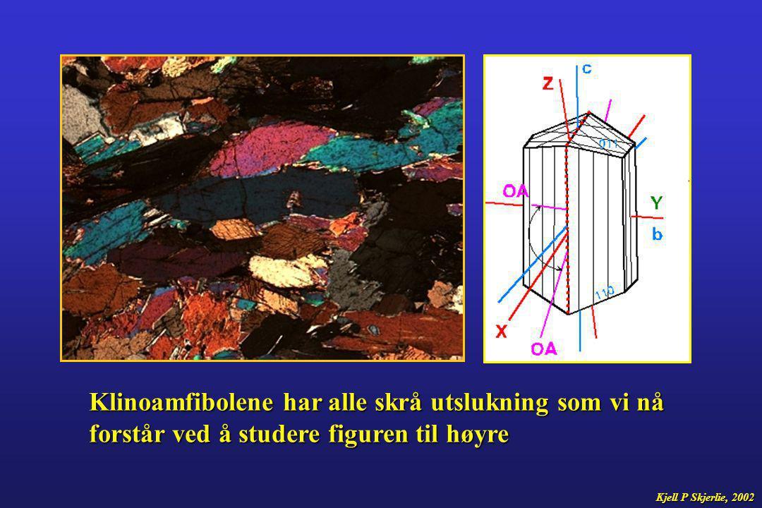 Klinoamfibolene har alle skrå utslukning som vi nå forstår ved å studere figuren til høyre Kjell P Skjerlie, 2002