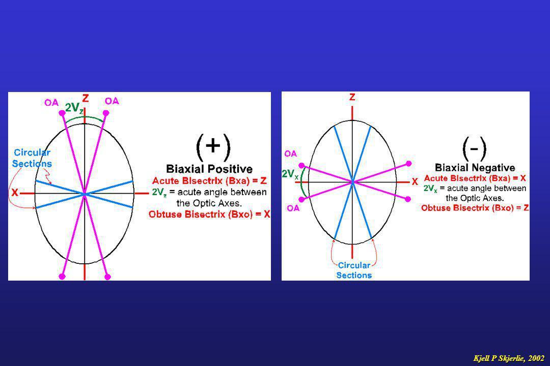 Observasjoner i planpolarisert lys (uten analysator) RelieffEgenfargePleokroisme Kjell P Skjerlie, 2002