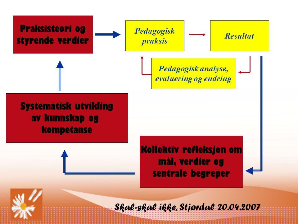 Skal-skal ikke, Stjørdal 20.04.2007 Praksisteori og styrende verdier Pedagogisk praksis Resultat Pedagogisk analyse, evaluering og endring Kollektiv refleksjon om mål, verdier og sentrale begreper Systematisk utvikling av kunnskap og kompetanse