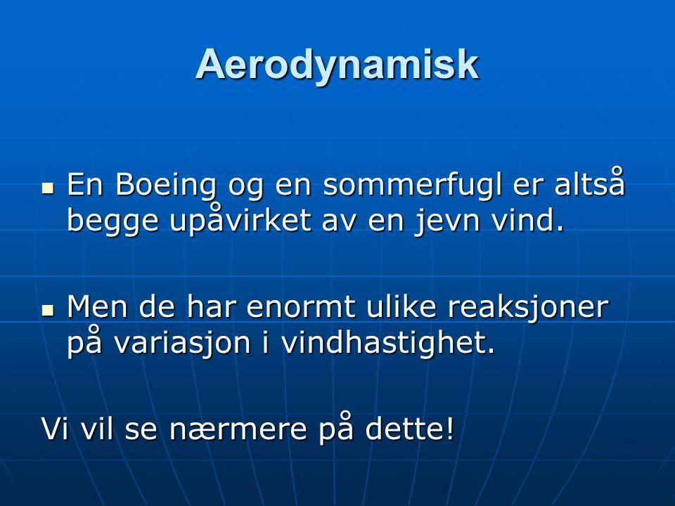 Aerodynamisk  En Boeing og en sommerfugl er altså begge upåvirket av en jevn vind.