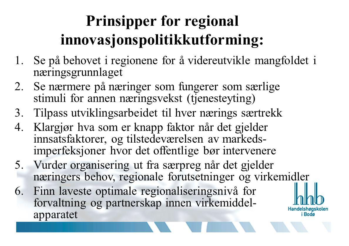 Prinsipper for regional innovasjonspolitikkutforming: 1.Se på behovet i regionene for å videreutvikle mangfoldet i næringsgrunnlaget 2.Se nærmere på n
