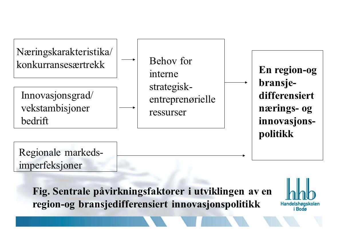 Innovasjonsgrad/ vekstambisjoner bedrift Næringskarakteristika/ konkurransesærtrekk Regionale markeds- imperfeksjoner Behov for interne strategisk- en