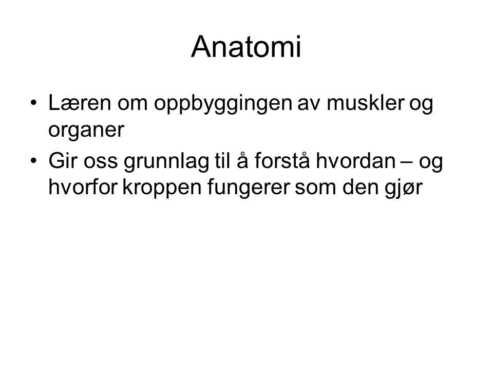 Anatomi •Læren om oppbyggingen av muskler og organer •Gir oss grunnlag til å forstå hvordan – og hvorfor kroppen fungerer som den gjør