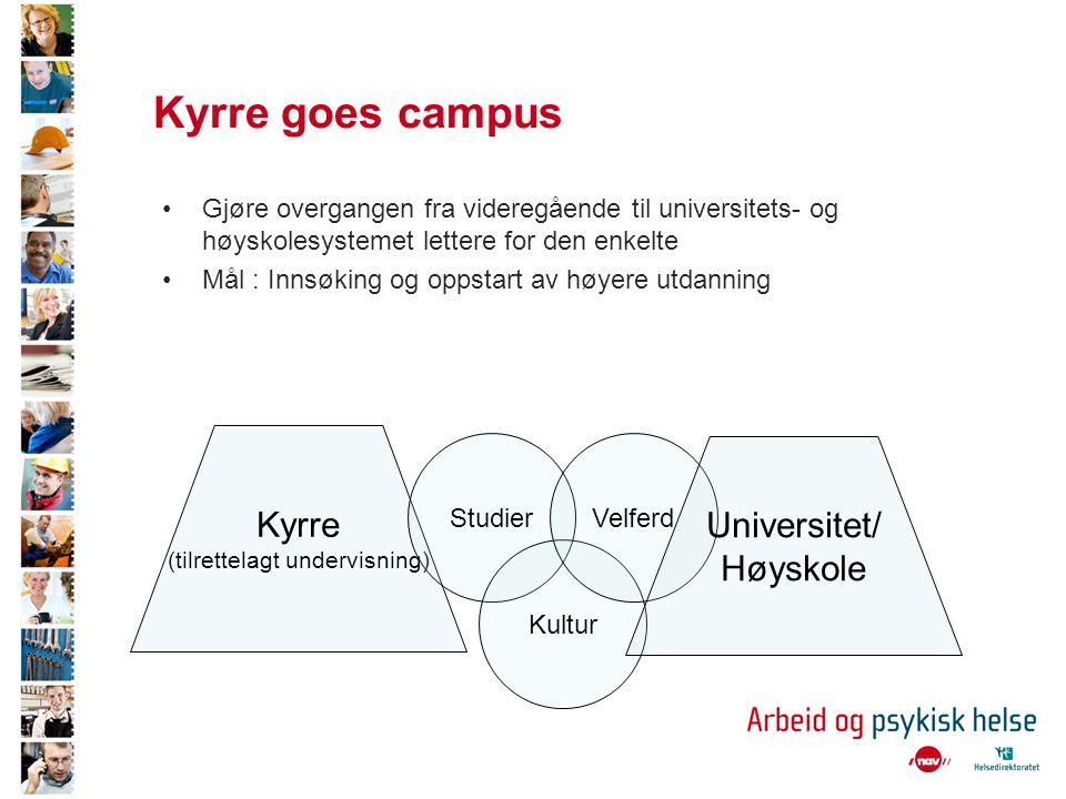 Kyrre goes campus •Gjøre overgangen fra videregående til universitets- og høyskolesystemet lettere for den enkelte •Mål : Innsøking og oppstart av høyere utdanning Kyrre (tilrettelagt undervisning) Studier Kultur Velferd Universitet/ Høyskole