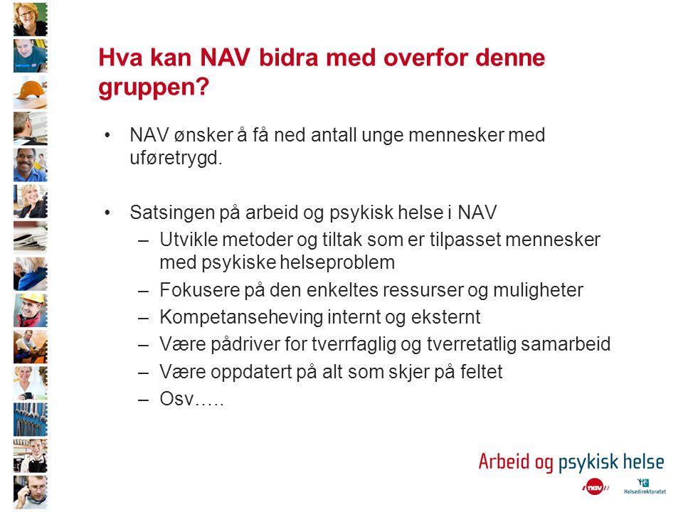Hva kan NAV bidra med overfor denne gruppen.