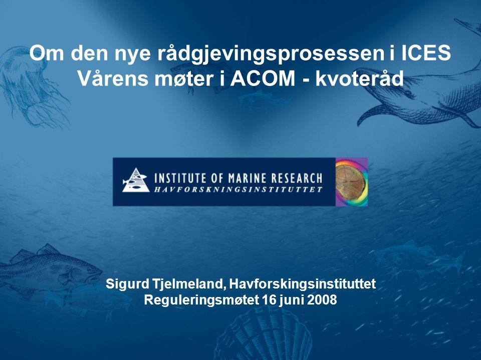 Om den nye rådgjevingsprosessen i ICES Vårens møter i ACOM - kvoteråd Sigurd Tjelmeland, Havforskingsinstituttet Reguleringsmøtet 16 juni 2008