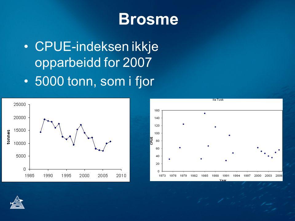 Brosme •CPUE-indeksen ikkje opparbeidd for 2007 •5000 tonn, som i fjor