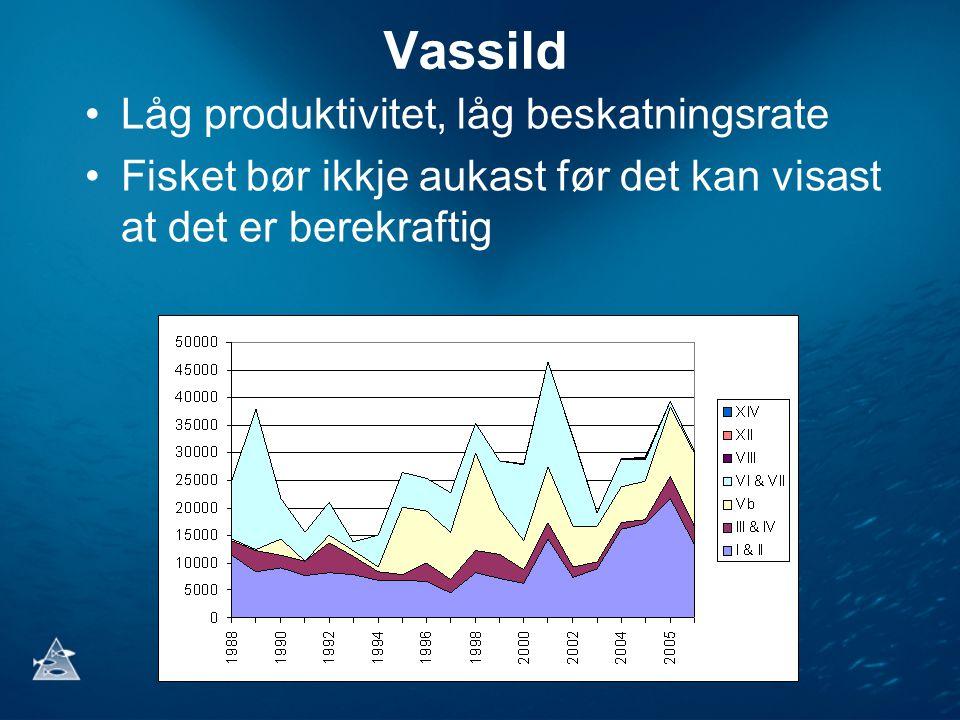 Vassild •Låg produktivitet, låg beskatningsrate •Fisket bør ikkje aukast før det kan visast at det er berekraftig
