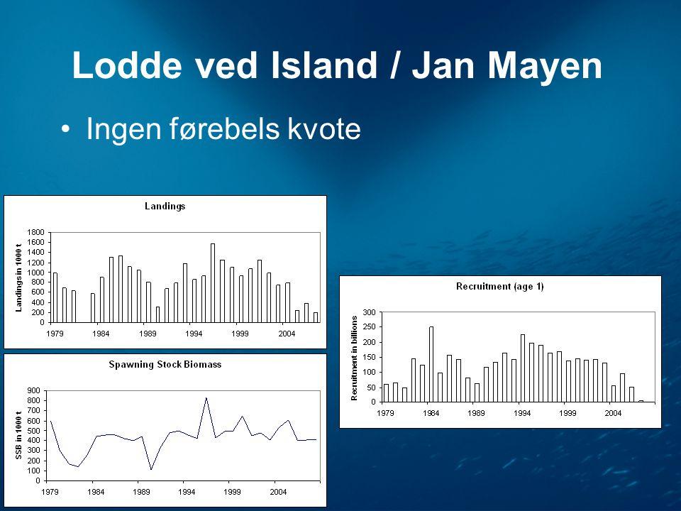 Lodde ved Island / Jan Mayen •Ingen førebels kvote