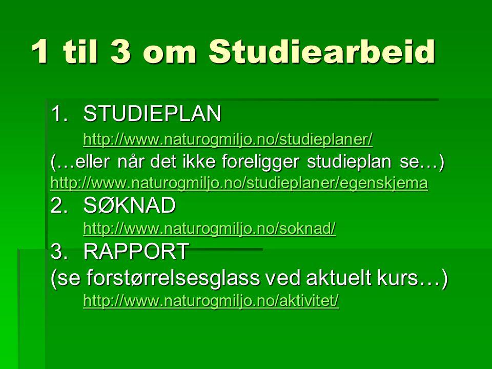 1 til 3 om Studiearbeid 1.STUDIEPLAN http://www.naturogmiljo.no/studieplaner/ (…eller når det ikke foreligger studieplan se…) http://www.naturogmiljo.no/studieplaner/egenskjema 2.SØKNAD http://www.naturogmiljo.no/soknad/ 3.RAPPORT (se forstørrelsesglass ved aktuelt kurs…) http://www.naturogmiljo.no/aktivitet/