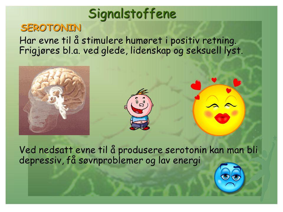 Signalstoffene Signalstoffene SEROTONIN SEROTONIN Har evne til å stimulere humøret i positiv retning. Frigjøres bl.a. ved glede, lidenskap og seksuell