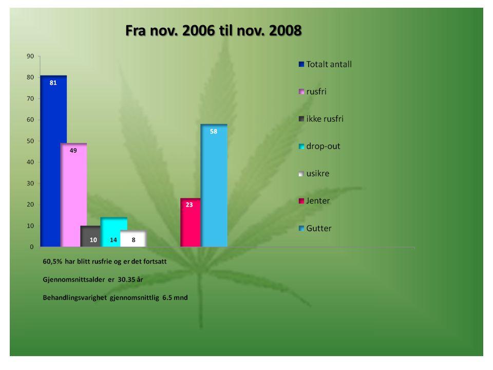 Fra nov. 2006 til nov. 2008