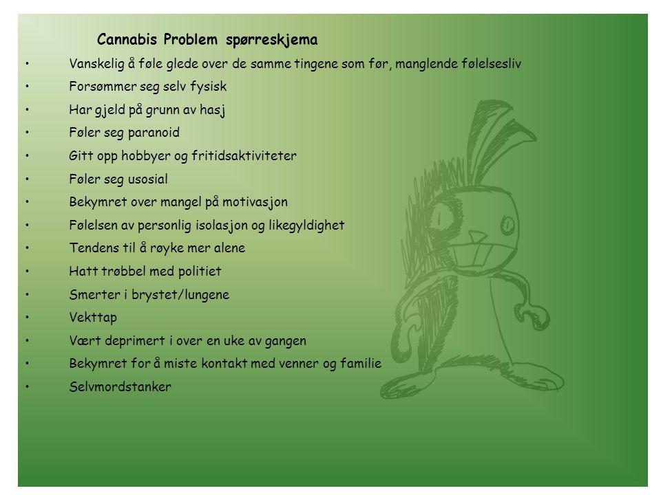 Cannabis Problem spørreskjema •Vanskelig å føle glede over de samme tingene som før, manglende følelsesliv •Forsømmer seg selv fysisk •Har gjeld på gr