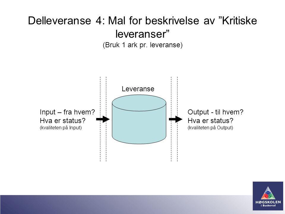 """Delleveranse 4: Mal for beskrivelse av """"Kritiske leveranser"""" (Bruk 1 ark pr. leveranse) Input – fra hvem? Hva er status? (kvaliteten på Input) Output"""