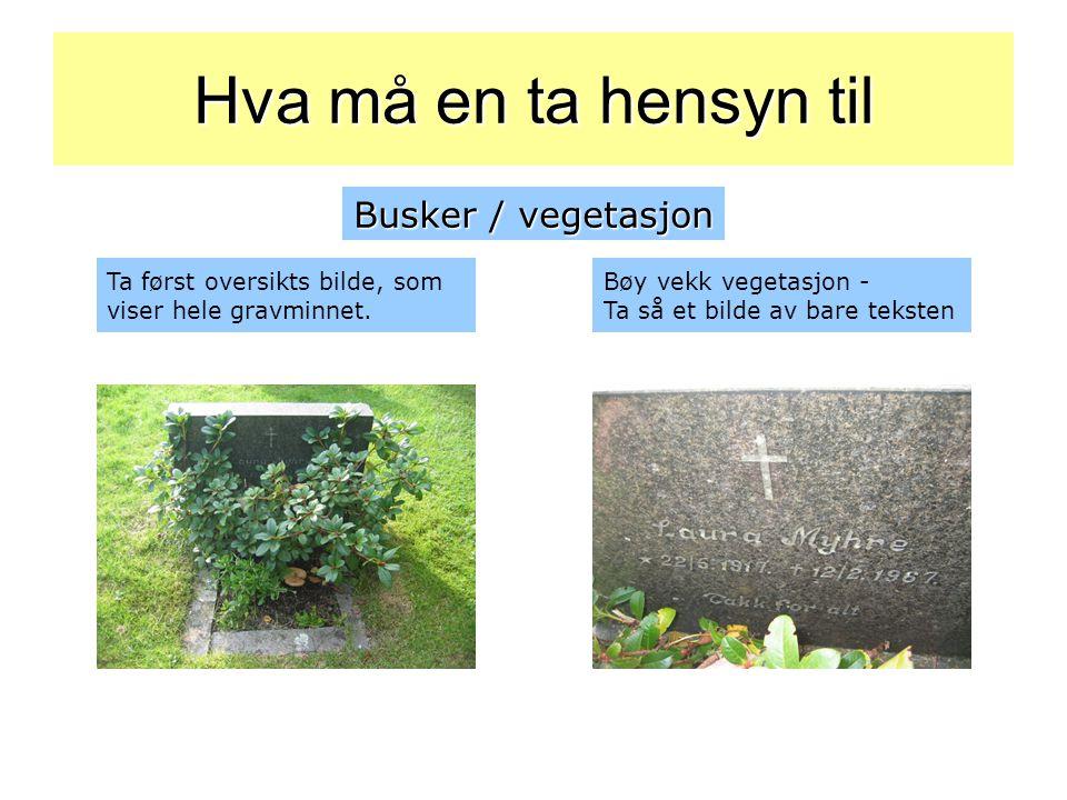 Ta først oversikts bilde, som viser hele gravminnet. Bøy vekk vegetasjon - Ta så et bilde av bare teksten Busker / vegetasjon