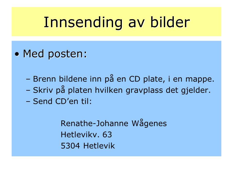 Innsending av bilder •Med posten: –Brenn bildene inn på en CD plate, i en mappe. –Skriv på platen hvilken gravplass det gjelder. –Send CD'en til: Rena