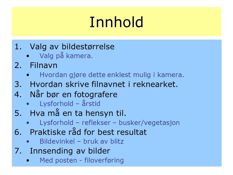 Praktiske råd for best resultat Bildevinkel Lett innfallende lys gir best resultat.