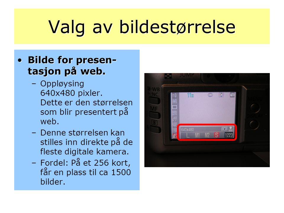 Valg av bildestørrelse •Bilde for presen- tasjon på web. –Oppløysing 640x480 pixler. Dette er den størrelsen som blir presentert på web. –Denne større